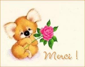 merci-liebster-award