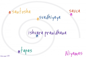 niyama-yoga