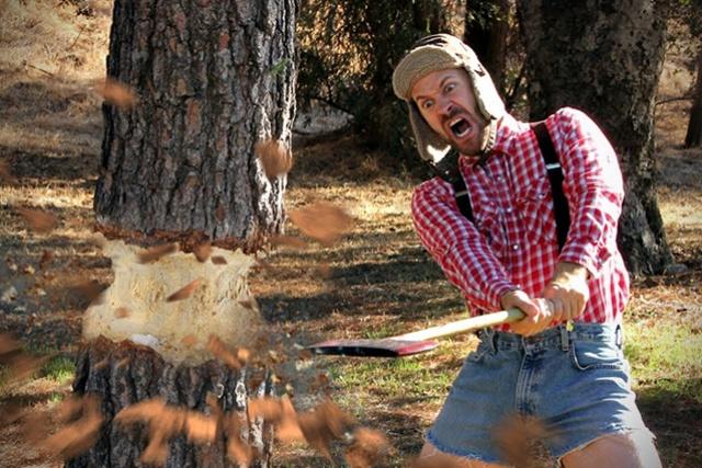 bucheron-scie-arbre