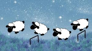 saute-mouton-sommeil