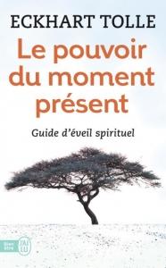 pouvoir-moment-present-tolle