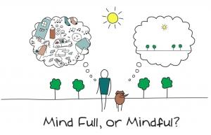 mindfull-mindful-pleine-conscience