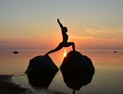 yoga sivananda