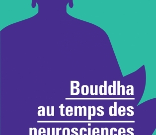 bouddha neurosciences méditation yoga