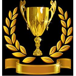 trophée-best-of-yoga-2014