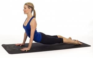 posture-chien-tete-haut-souplesse-yog