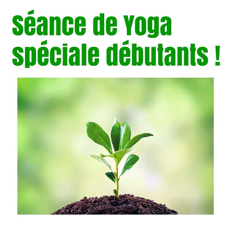 seance-yoga-speciale-debutantes