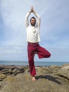 posture-arbre-stephane-signorini-yoga