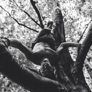acro-yoga-arbre