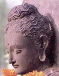 buddha-gautama