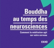bouddha neurosciences méditation yoga